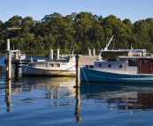 Fishing boats in the morning light in Strahan