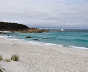 One of the beautiful beaches in the Bay of Fires Conservation Area