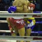 Muay Thai fighting at Lumphini Stadium