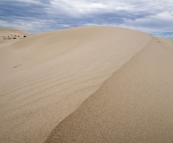 Striking white sand dunes at Eucla National Park
