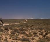 The arid expanse of Ningaloo Station with goats and sheep to the right