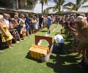 Crab races on Melbourne Cup Day at Ningaloo Reef Resort
