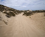 The sandy track on the way to Five Finger Reef that almost had us all walking back to Coral Bay!