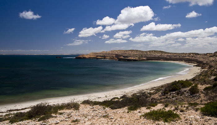 Along one of the scenic drives near Streaky Bay