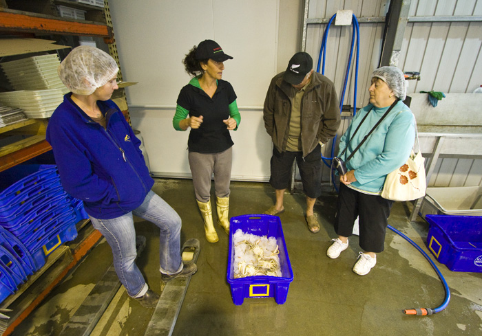 Our tour of one of the seafood processors in Port Lincoln