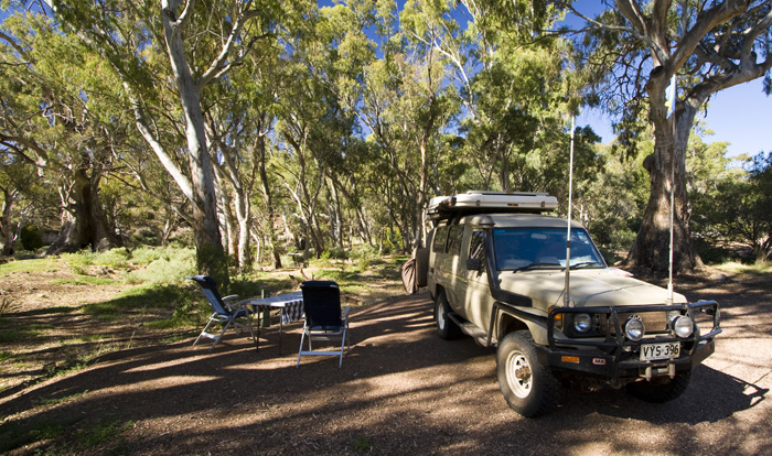 Spending the night in Mount Remarkable National Park
