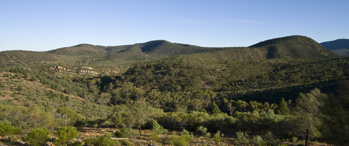 Mount Remarkable National Park