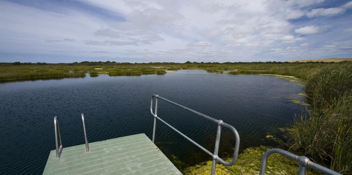 Piccaninnie Ponds