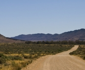 Road back to Quorn from Partacoona Station