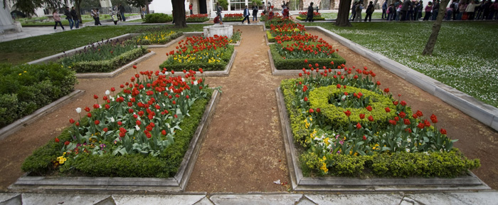 More tulips in Topkapi Palace...
