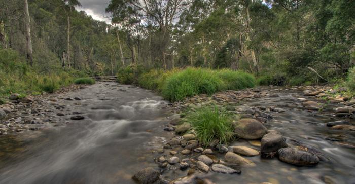 The Howqua River at Noonans Flat