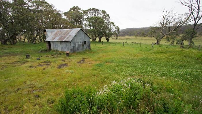 Howitt Plains Hut