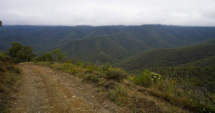 The Wombat Spur Track and the Victorian Alps