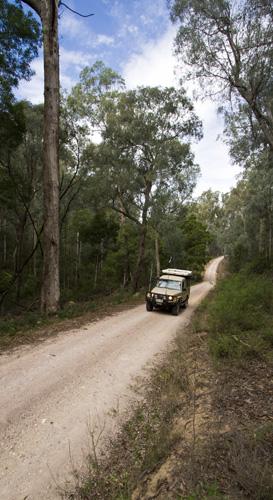 The Tank cruising Yalmy Road to Raymond Creek Falls