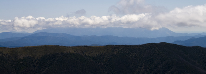 The Razorback Trail with Mount Bogong in the clouds in the distance