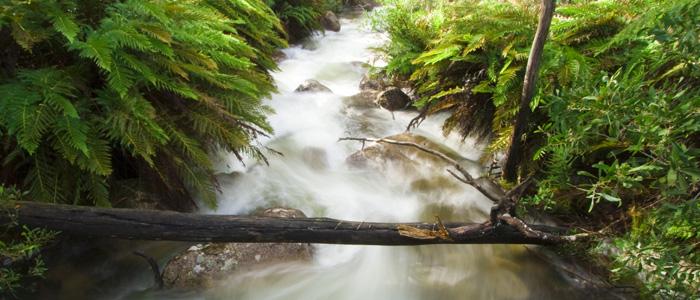 Eurobin Creek
