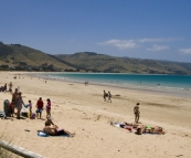 Apollo Bay's beach