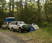 Camping at Big Hill in the Otway Ranges