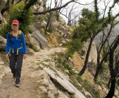 Lisa on her way to Sealers Cove through some charred Eucalypt forest