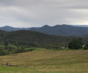 High country pastoral land near Snowy River National Park