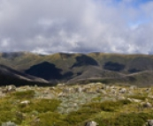 Panoramic of the Razorback Trail with Mount Feathertop in the clouds to the right