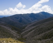 Mount Feathertop and the Razorback Trail