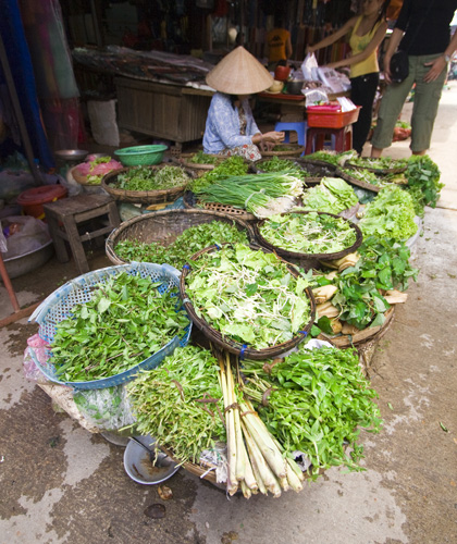 The Hoi An central market