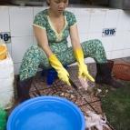 Skinning fresh frogs in Ben Tanh Market