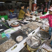 One of the shrimp stalls in Ben Tanh Market