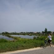 Lisa riding her bike next to the rice paddies between Hoi An and Cua Dai Beach