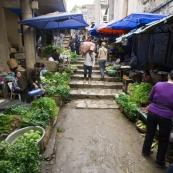 The Sapa markets