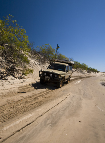 The boggy sand track back from the beach at Chile Creek