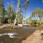 Miner\'s Pool swimming hole on Drysdale Station