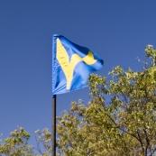 The Tank\'s flag