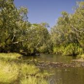 The Carson River crossing