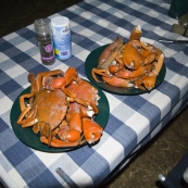 Our dinner of mud crabs after a successful afternoon of spearing