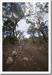 The hiking trail along the dry bed of Wilcolo Creek