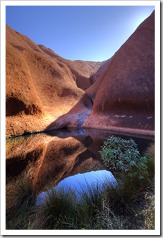 One of the permanent waterholes on the southern side of Uluru
