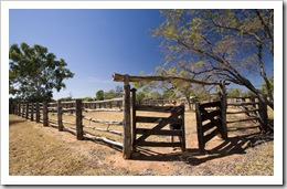 Lisa in the Bullita Homestead cattle yards