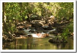 Florence Creek below Florence Falls