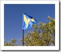 The Tank's flag
