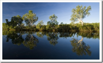 Afternoon sun on the King Edward River