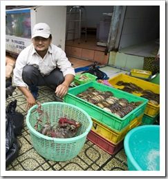 Live crabs (even though they don't look it) in Ben Tanh Market