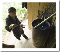 Mi showing us how the H'Mong people dye their hemp clothing its indigo color