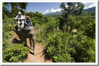 Riding through the Laos jungle