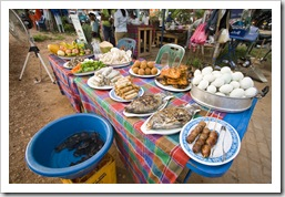 Some of the foods on offer at the stalls alongside the Mekong (those are live frogs in the blue bucket)
