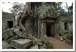 Ta Prohm: the jungle temple
