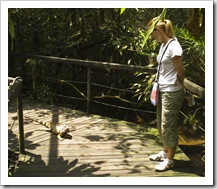 The Singapore Zoo: Lisa being followed by an Iguana in one of the free-ranging reptile exhibits