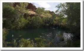 Swimming in Fern Pool in Dales Gorge