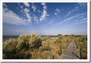 Boardwalk through the dunes in Onslow